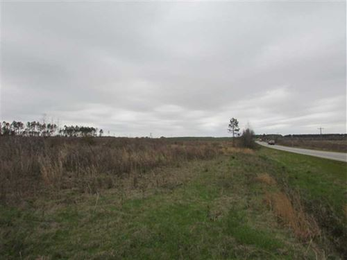 Home Sites OR Farmland Near Doerun : Doerun : Colquitt County : Georgia