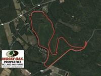 Reduced, 290.75 Acres of Creek Fro : Burgaw : Pender County : North Carolina
