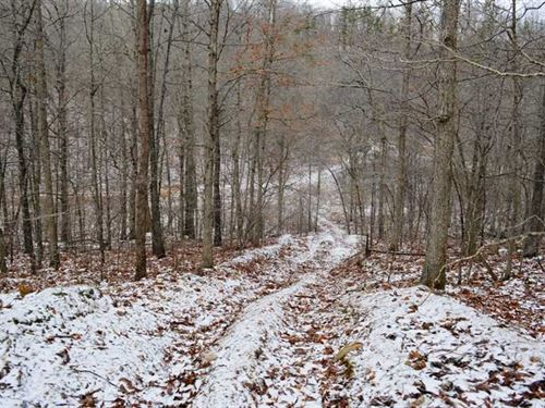 90 Acres For Sale in Reynolds : Annapolis : Reynolds County : Missouri