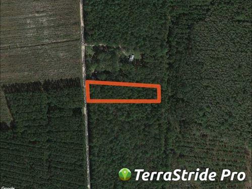 1.97 Acres in Camden County, GA : Waverly : Camden County : Georgia