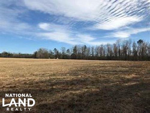 Colburn Recreational Tract, Farm : Latta : Dillon County : South Carolina