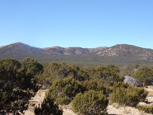 Forested Mountain Acreage Lincoln : Corona : Lincoln County : New Mexico