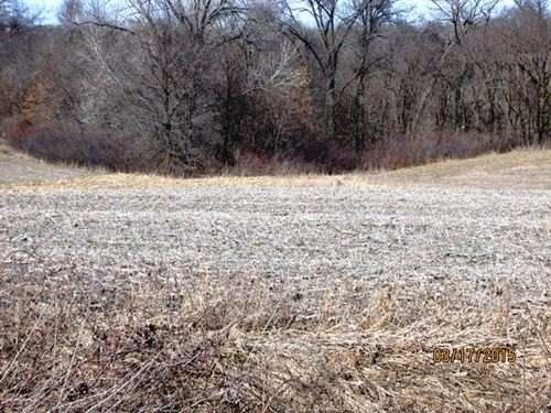 Appanoose County Land For Sale : Melrose : Monroe County : Iowa