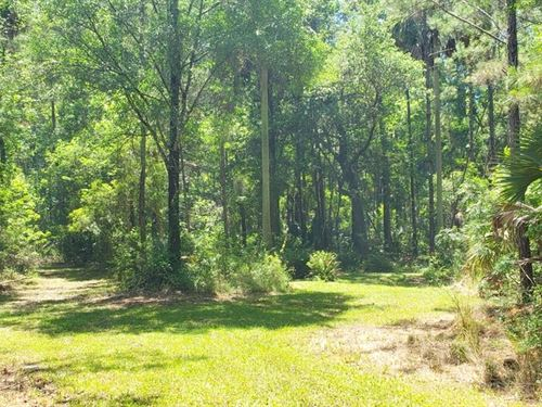 Ft McCoy Farms, 43.41 Acres : Fort McCoy : Marion County : Florida