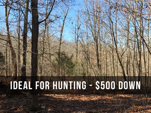 10+ Acres For Hunting : Mountain View : Howell County : Missouri