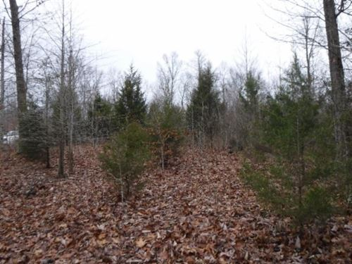 .48 Acres, Mtn Views, Secluded Area : Celina : Clay County : Tennessee