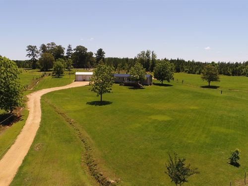 Farm With Home In Butler County : Rut : Butler County : Alabama