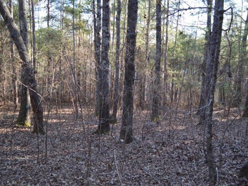 4.22 Acres Across From The Tugaloo : Westminster : Oconee County : South Carolina