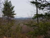 23.71 Acres in Connelly Springs : Connelly Springs : Burke County : North Carolina