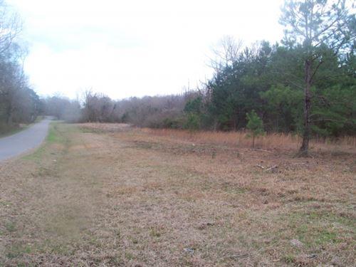 28 Acres In Lawrence County In Oak : Oak Vale : Lawrence County : Mississippi