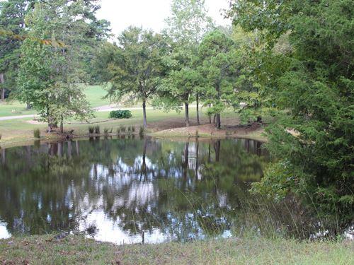 Waterfront Acreage East Texas, Wood : Winnsboro : Wood County : Texas