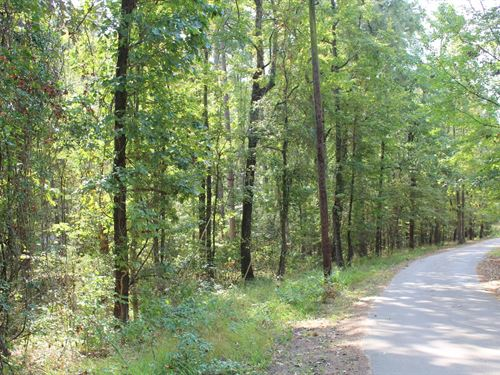 Over 2 Acre Lot 4-D Country Estates : Winnsboro : Wood County : Texas