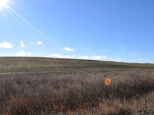 Land Goldendale Washington, Hood : Goldendale : Klickitat County : Washington