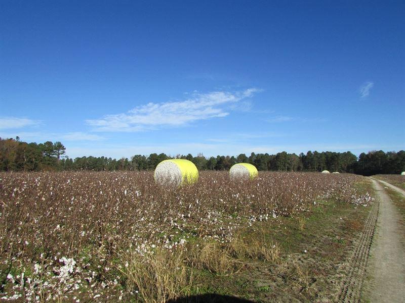 Concord 2 Tract : Sumter : Sumter County : South Carolina
