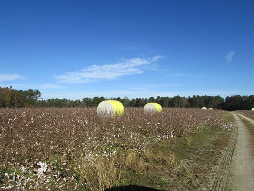Concord 2 Tract : Sumter : South Carolina