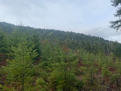 501 Acres in Azalea, OR : Azalea : Douglas County : Oregon