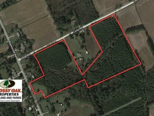 Under Contract, 15.2 Acres of Hun : Bolton : Columbus County : North Carolina