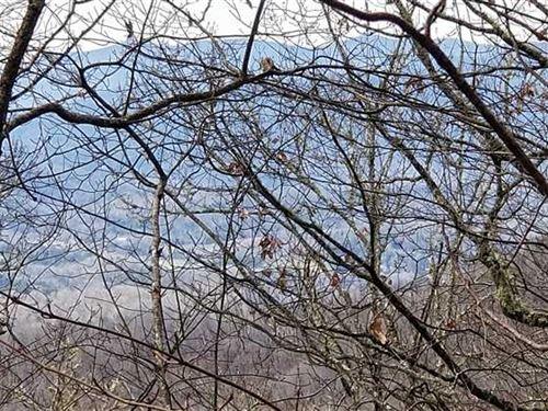 Gorgeous Property Near Cherokee : Qualla : Jackson County : North Carolina