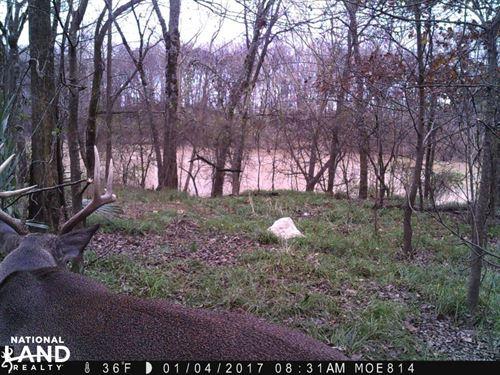 Deer Hunting on 143 Acres of Crp : Oak Grove : West Carroll Parish : Louisiana