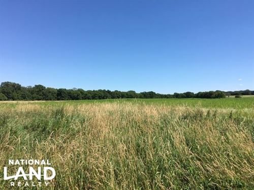 Farmland/Income-Producing/Investmen : Rochester : Olmsted County : Minnesota