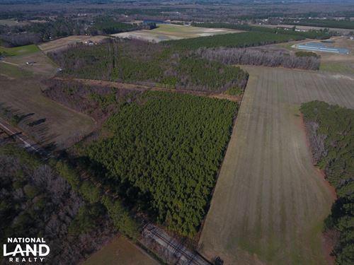 Hill Tract : Kinston : Jones County : North Carolina