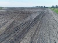 151.5 Acres Crop & Rim Land Lincoln : Lake Benton : Lincoln County : Minnesota