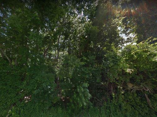Saint Johns County, Fl $25,000 Each : Saint Johns : Florida