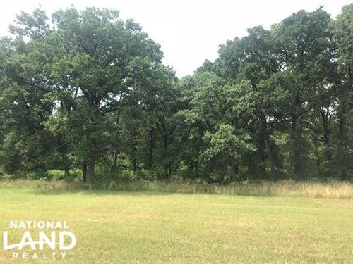 21 Acres Near Cedar Creek Lake, Rol : Mabank : Henderson County : Texas