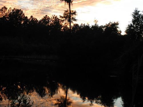 2Bd, 2Ba Mobile Home 15 Acres Pond : Pembroke : Bulloch County : Georgia