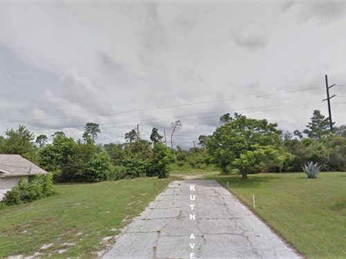 Nearly 1/2 Acre Deltona Land : Deltona : Volusia County : Florida