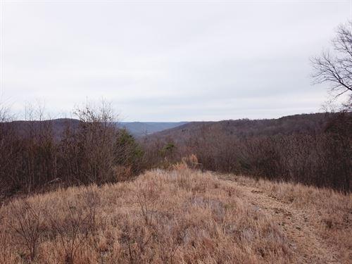 39.52+/-Acres Unrestricted : Beersheba Spring : Grundy County : Tennessee