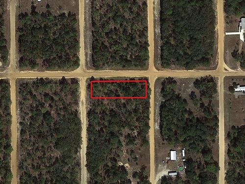 .43 Acre Lot Near Interlachen : Interlachen : Putnam County : Florida