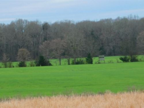 720 Acres In Copiah County In Cryst : Crystal Springs : Copiah County : Mississippi