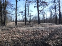 Vacant Land For Sale : Pocahontas : Randolph County : Arkansas