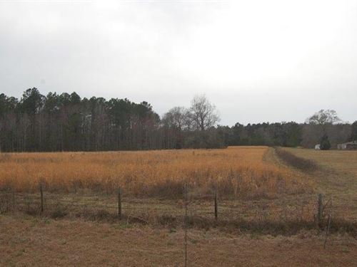 36-Acre Tract Custom Home Site : Guyton : Effingham County : Georgia