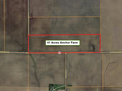 41 Anchor Farm : Cropsey : McLean County : Illinois