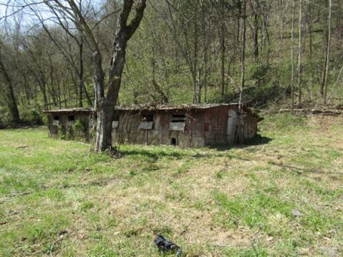 25.72 Acres, Hog Barn, Corn Crib : Celina : Clay County : Tennessee