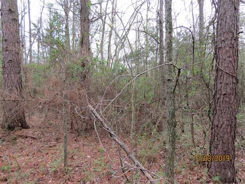 Woody Site Ready to Build on : Idabel : McCurtain County : Oklahoma