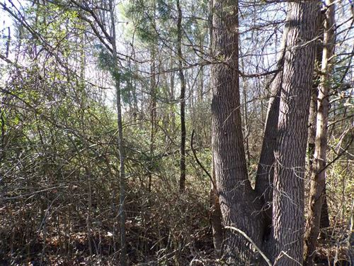 Secluded Residential Site With Cit : Idabel : McCurtain County : Oklahoma