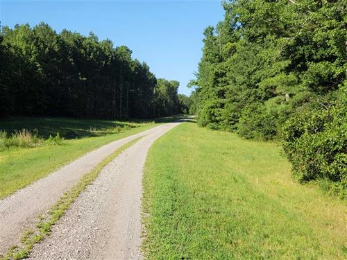 21 Acres in Chester, Chester County : Chester : South Carolina