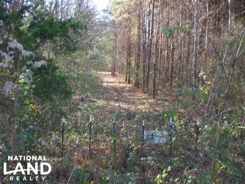 Thigpen Rd Timber 82 : Raymond : Hinds County : Mississippi