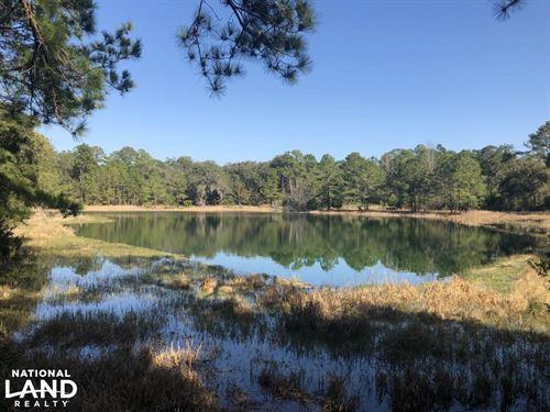 Scott Hill Farm, Hunting / Recreat : Saint Helena Island : Beaufort County : South Carolina