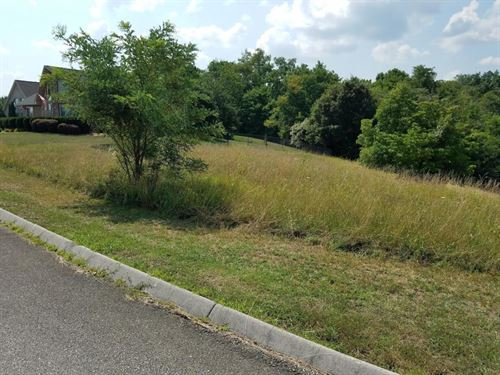 Nice Lot Riverbend Drive Dandridge : Dandridge : Jefferson County : Tennessee