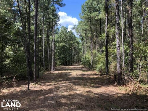 42.5 Acre Hunting & Timber Tract : Kosciusko : Attala County : Mississippi
