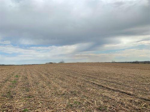 Crop Ground For Sale Southern Iowa : Athelstan : Taylor County : Iowa