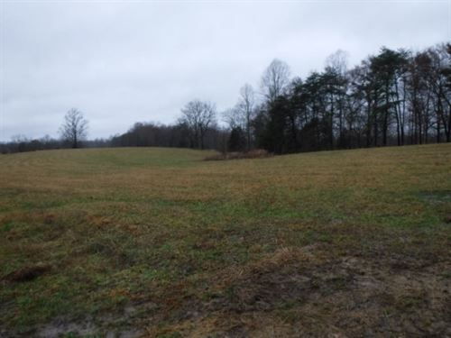 41.69 Ac, Mtn Views, Pasture, Rural : Moss : Clay County : Tennessee