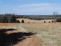 255 Acre Cattle Farm/Hunting Prope : Concord : Cleburne County : Arkansas