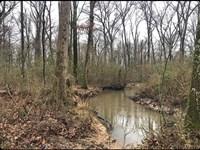 Dropper $45,000, This 40 Acres : Vilonia : Faulkner County : Arkansas