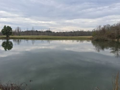 241 Acres With A Home In Holmes Cou : Durant : Holmes County : Mississippi