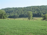 1000 Contiguous Acres More Less : Soldiers Grove : Crawford County : Wisconsin